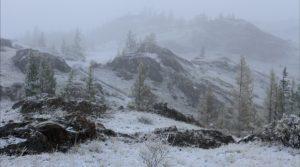 первый снег на алтае
