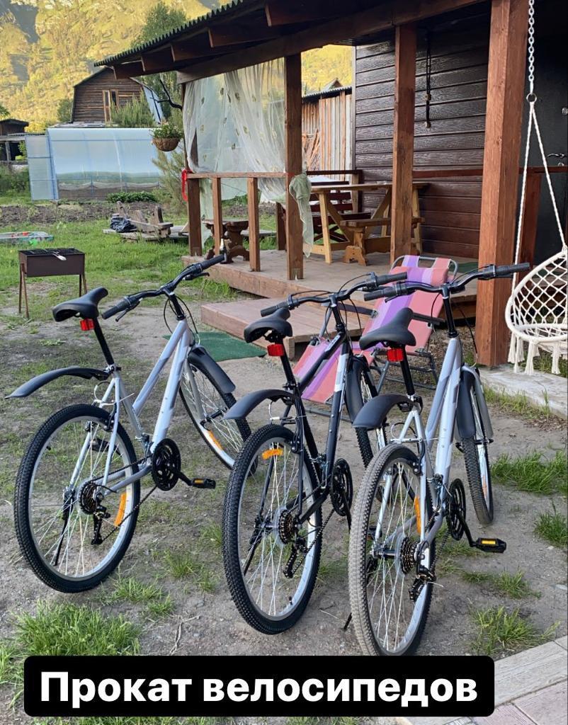 Прокат велосипедов в Чемал